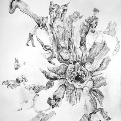 Altitude Attitude, une exposition de Cornelia Eichhorn