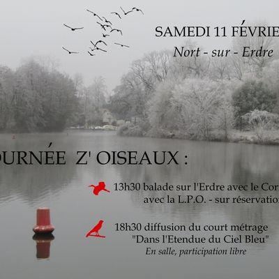 11 février: Journée Z'Oiseaux !