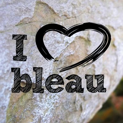 I love Bleau