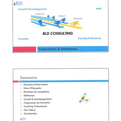 Prestations BLD Consulting