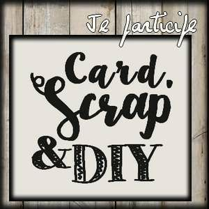 "rejoindre ""card scrap and DIY"""