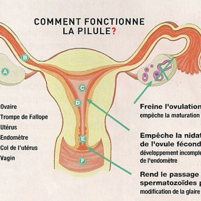 CLASSIFICATION  DES PILULES CONTRACEPTIVES