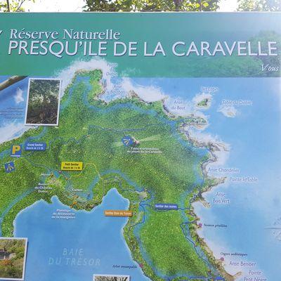 Vacances à la Martinique - janvier-fevrier 2018 - 3 semaines de bonheur