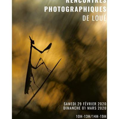 EXPOSITION PHOTO A LOUE (72)