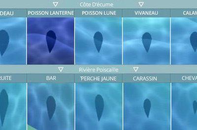 ACPC : Les différents poissons