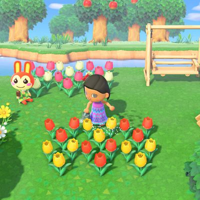 Comment obtenir des roses en or dans Animal Crossing New Horizons ?