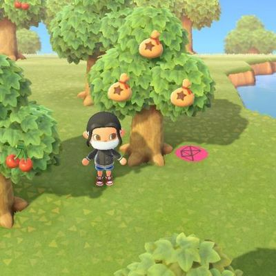 Comment planter des arbres à clochettes dans Animal Crossing New Horizons ?
