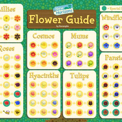 Animal Crossing New Horizons : comment obtenir des fleurs hybrides