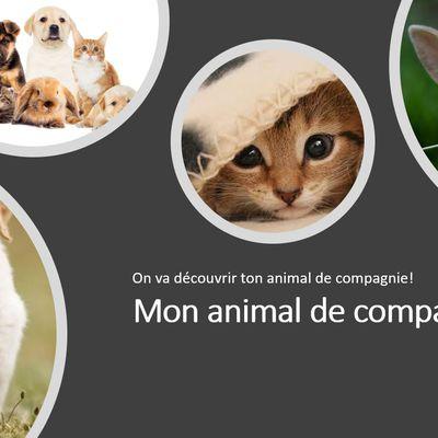"""## Attività classi prime: """"les animaux"""" ##"""