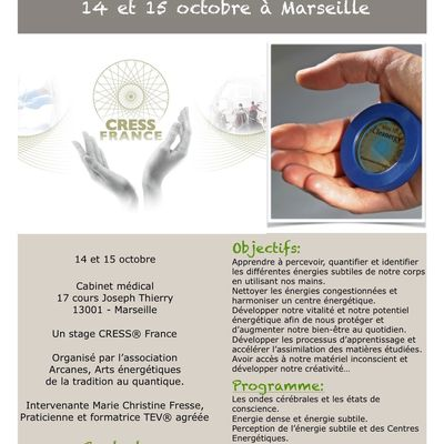 "Formation Cleanergy-TEV® Module ""introduction aux énergies subtiles"""