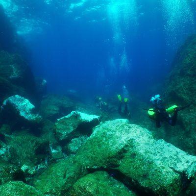 De retour des Açores, épisode 1
