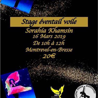 Stage de Danse Orientale avec Sorahia à Montrevel-en-Bresse