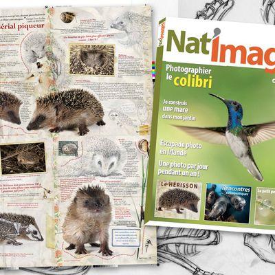 Nat'images n°44