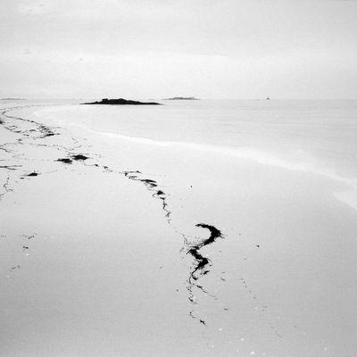 A Dieu l'ami, Yann Queffelec, peintre de l'île nue