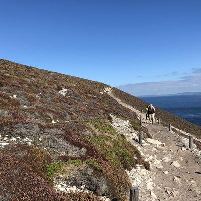 Balade au cap de la Chèvre - Bretagne 2018