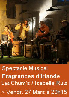 Spectacle Musical - l'Irlande