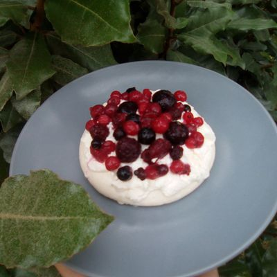 Pavlova aux fruits rouges (companion ou pas)