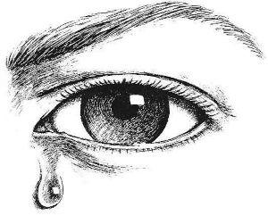Maladie, mort et voyeurisme