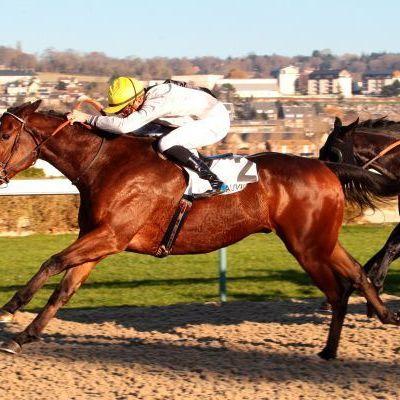 Quinté Dimanche à Deauville : la course de Dylaban