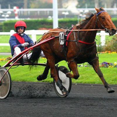 Quinté vendredi à Caen : Aubrion, retour en champion