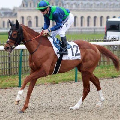 Les chevaux repérés : semaine du 01/04 au 07/04