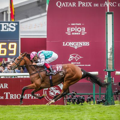 Qatar Prix de l'Arc de Triomphe 2019 : Enable is able !