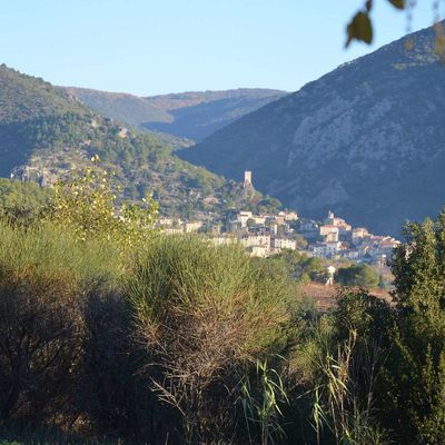 la ferme de Berlan Roquebrun