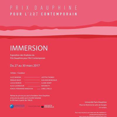 Immersion, thème du Prix Dauphine pour l'art contemporain 2017. Le Prix du jury et celui du public seront décernés jeudi 30 mars.