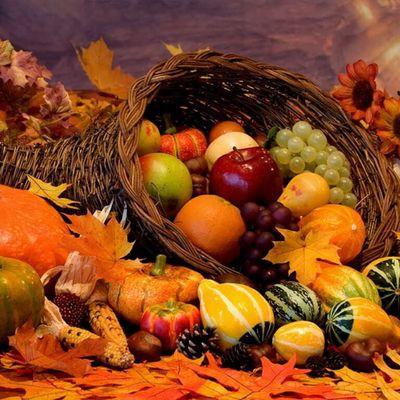Infos de l'automne