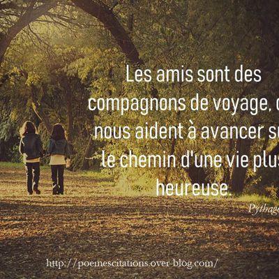 Les amis sont des compagnons de voyage...