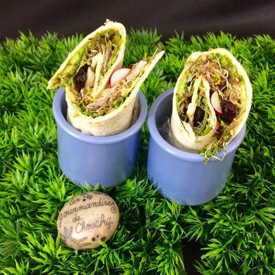 Wrap végétarien  avec mon partenaire Elixanatur.com : graines germées, avocat , roquette, radis, cranberries, graines de courge et tournesol