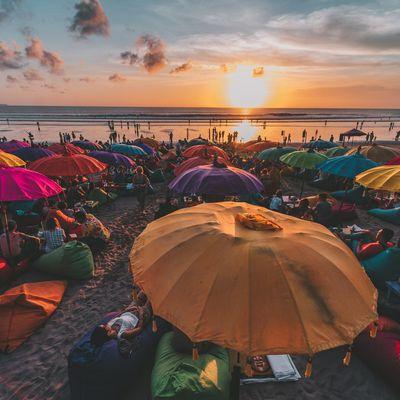 Stress et IL-31 : des nouvelles de Bali