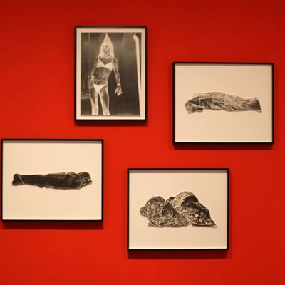 Exposition Dessin Contemporain: Marc BRANDENBURG « Snowflake »
