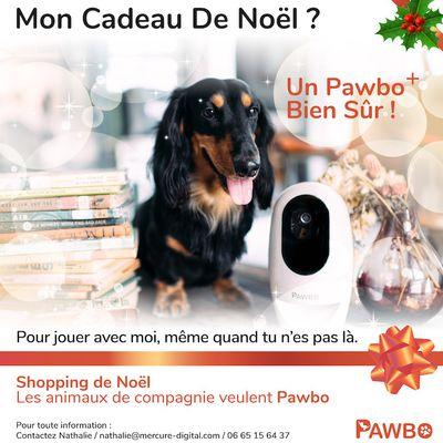 #Animaux : Mon cadeau de #Noël ? Un Pawbo bien sûr !