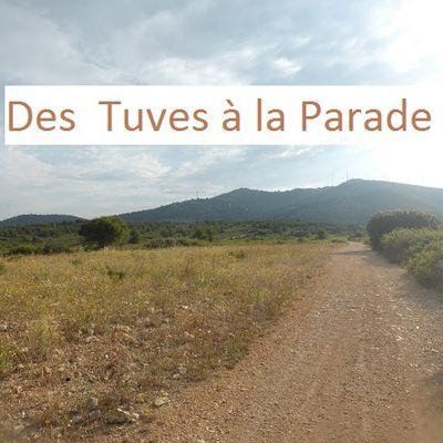 Marseille _Des  Tuves à la Parade