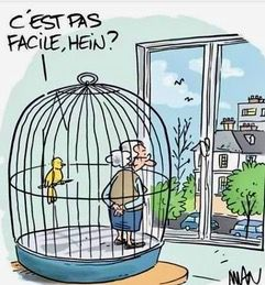 Humour et confinement