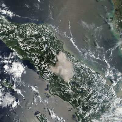 Activity of Sinabung, Villarica, Sabancaya and Grimsey / TFZ.