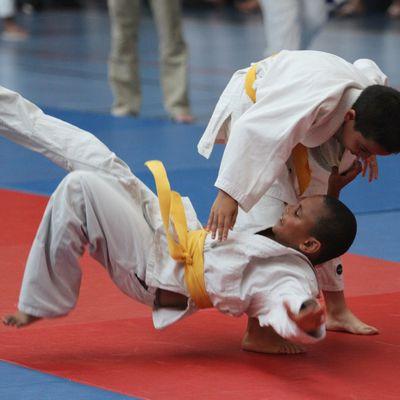 13 judokas de l'ALVP aux « Départementaux UFOLEP » minimes à seniors ce samedi