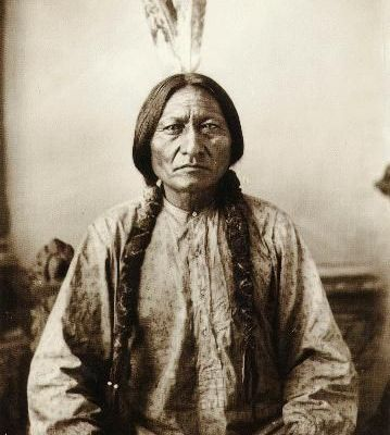 SITTING BULL  (Bison assis)