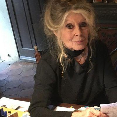 """""""Ça me choque!"""" Brigitte Bardot dégoûtée par l'attitude de Laeticia pour l'héritage de Johnny Hallyday"""