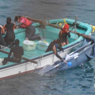 Taiji : le massacre des dauphins continue au nom d'une pseudo « tradition »