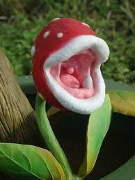 Comment réaliser une vraie plante Piranha de Mario #LTDFN