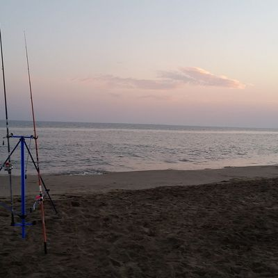 Sortie Surfcasting - 29 Juillet 2017 - Pêche fructueuse