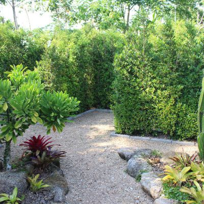 Khao Lak Updates - Labyrinth