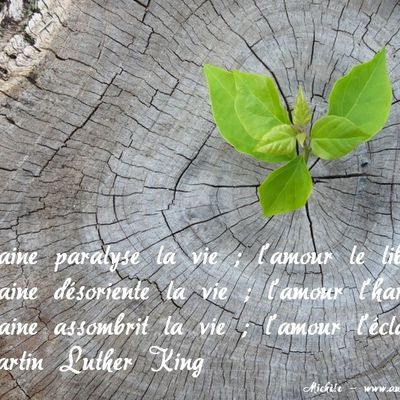 L'amour selon Martin Luther King