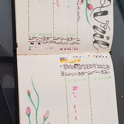 Bullet journal, weekly sheets