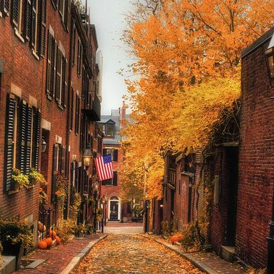 New-York - Rue - Automne - Picture - Free