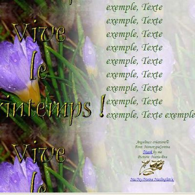 Vive le printemps Crocus Incredimail & Papier A4 h l & outlook & enveloppe & 2 cartes A5 & signets      vive_le_printemps_krokus_firefly_a56_00