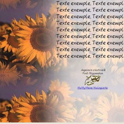Tournesols Incredimail & Papier A4 h l & outlook & enveloppe & 2 cartes A5 & signets 3 langues     f783096