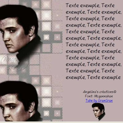 Elvis Vedettes Incredimail & Papier A4 h l & outlook & enveloppe & 2 cartes A5 & signets 3 langues      elvis_006